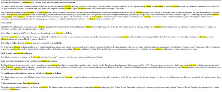 De SEO-strategie van Zalando in 2010: 68 keer het woord 'schoenen' op de homepage.